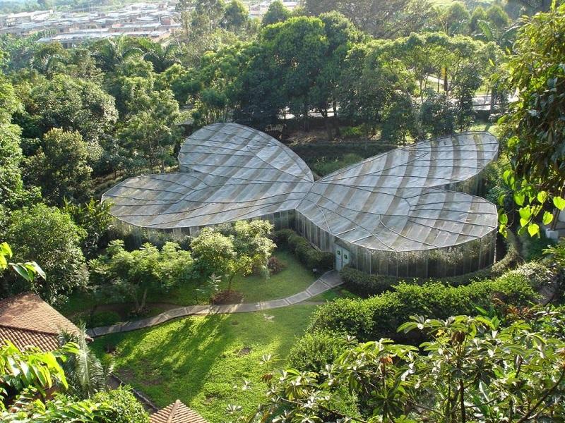 Estufa do Jardim Botânico de Bogotá